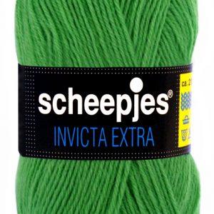 Scheepjes Invicta Extra 1466-0